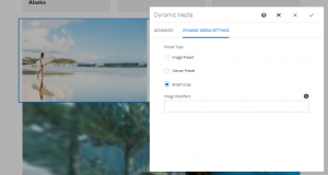 preset types in dynamic include smart crop, viewer preset and image preset
