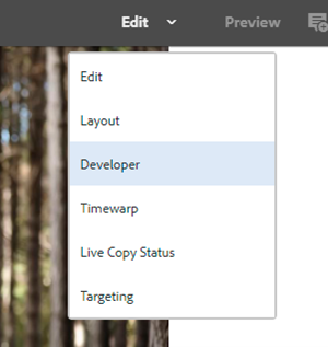 AEM sites UI showing the different options in edit mode including developer mode